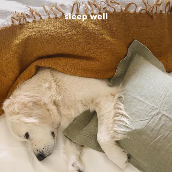 sleep-well-1.jpg