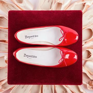 Follow @repetto_japan on Instagram